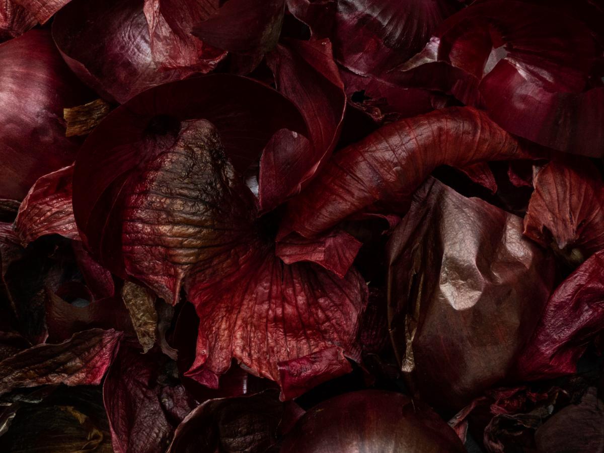 Vegetable Beet Herb #425356