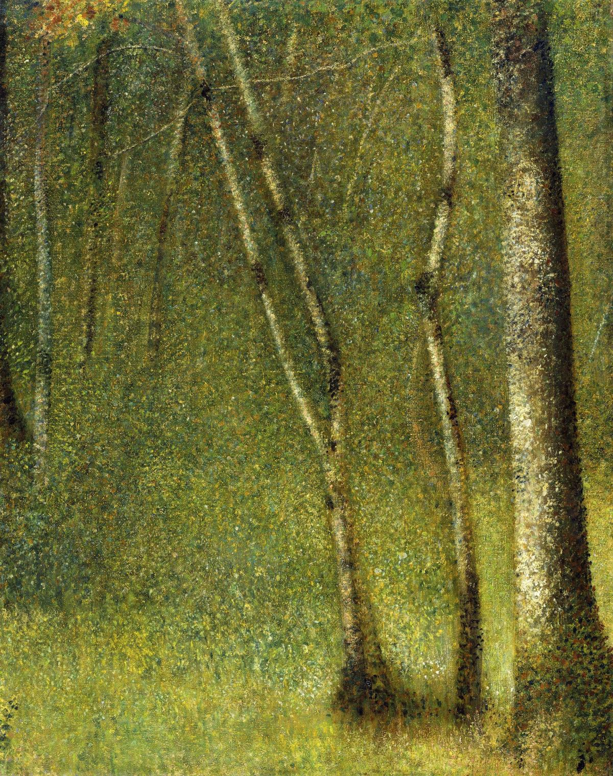 The Forest at Pontaubert (1881) by Georges Seurat. Original from The MET Museum.  #425602