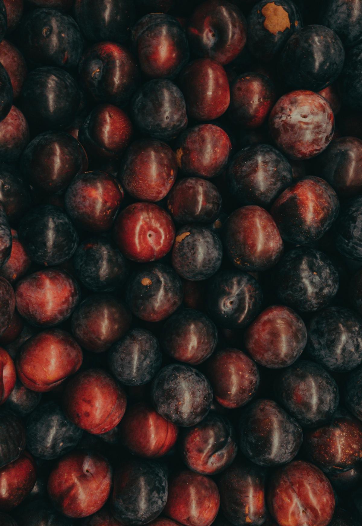 Fruit Seed Food