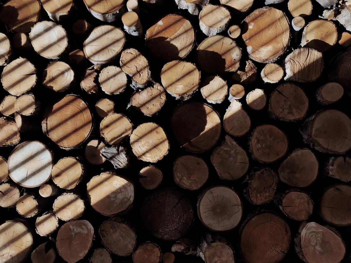 Bark Factory Winery #425877