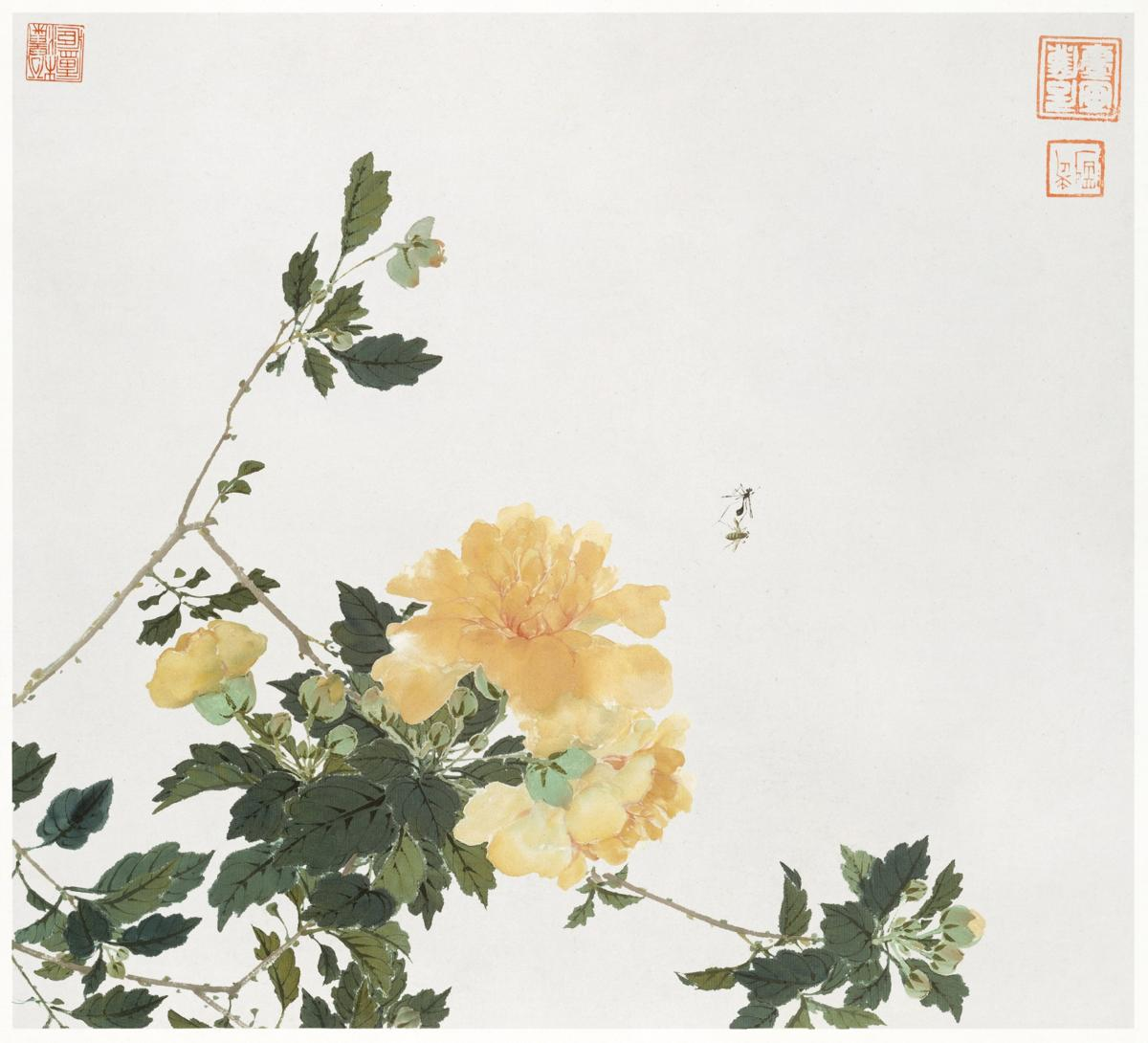 Insects and Flowers (Qing dynasty ca. 1644–1911) by Ju Lian. Original from The Getty.  #426054