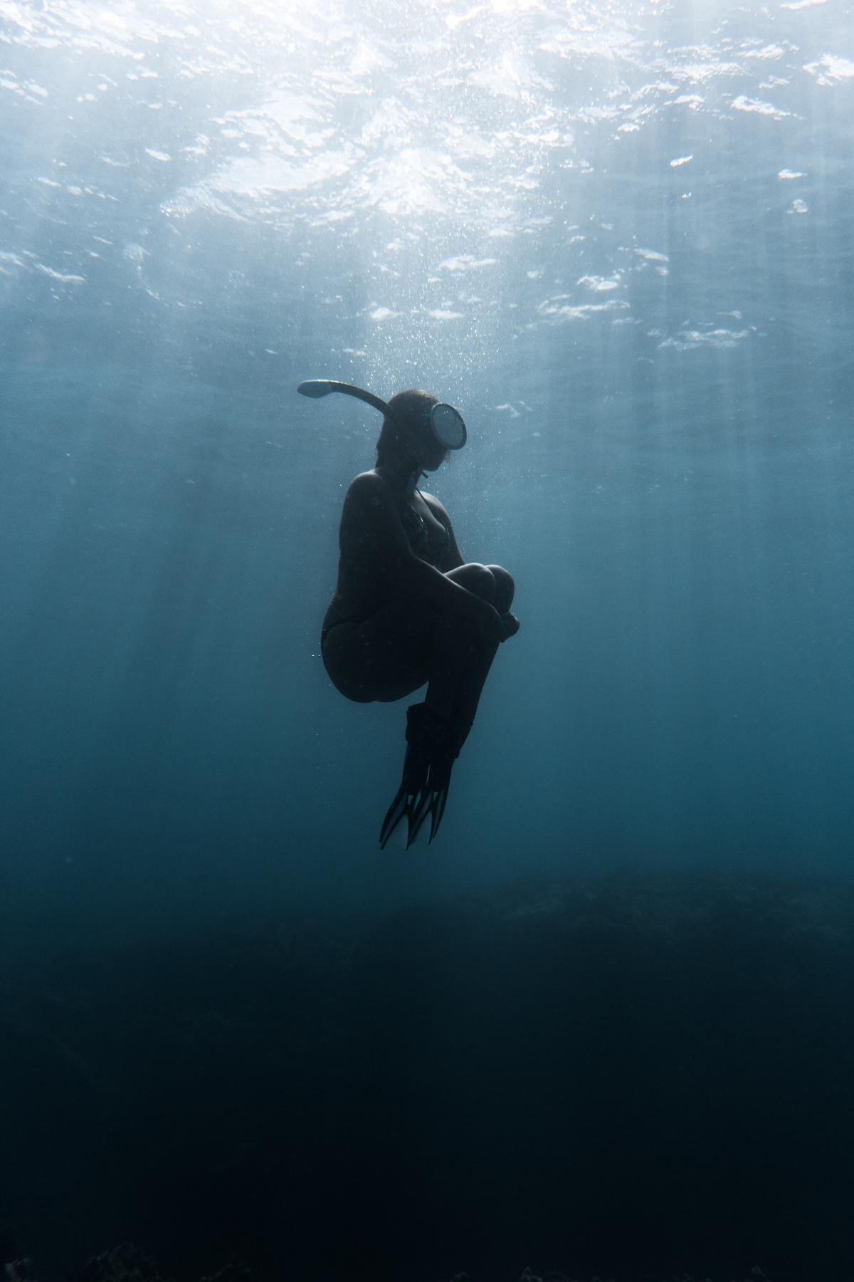 Scuba diver Diver Explorer #426363