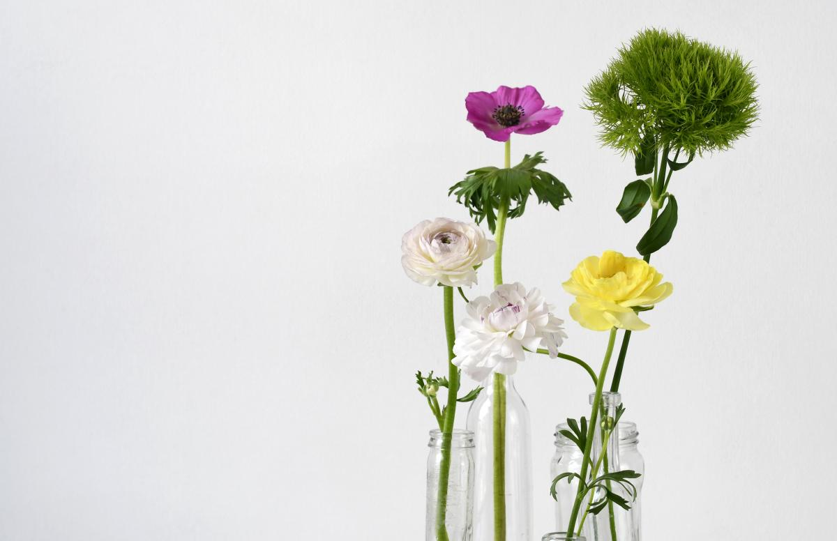 Flower Pink Bouquet #426549