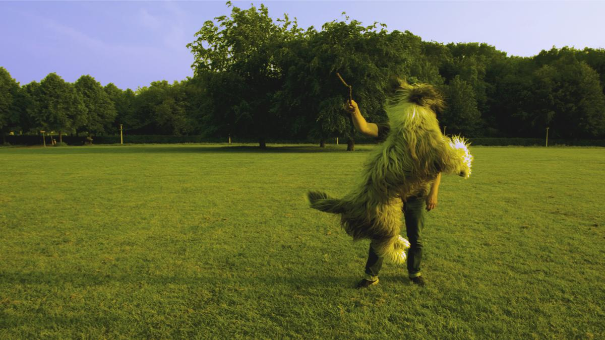 Man in Black Shirt Standing on Green Lawn While Playing With Brown Long Coat Medium Sized Dog #43669
