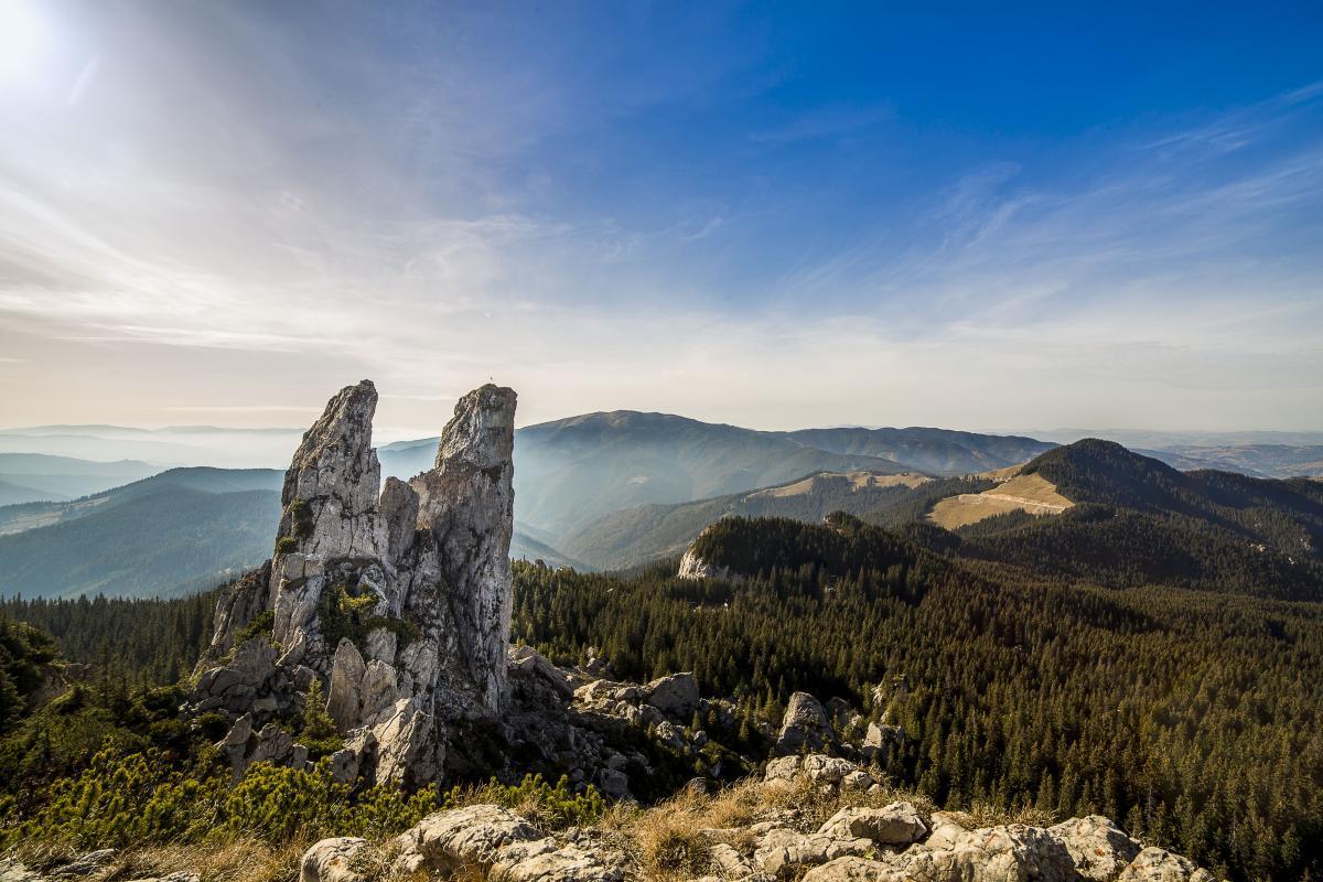 Foto von Green Trees In Der Nähe Grey Rack Mountain Unter Blue Sky tagsüber #49587