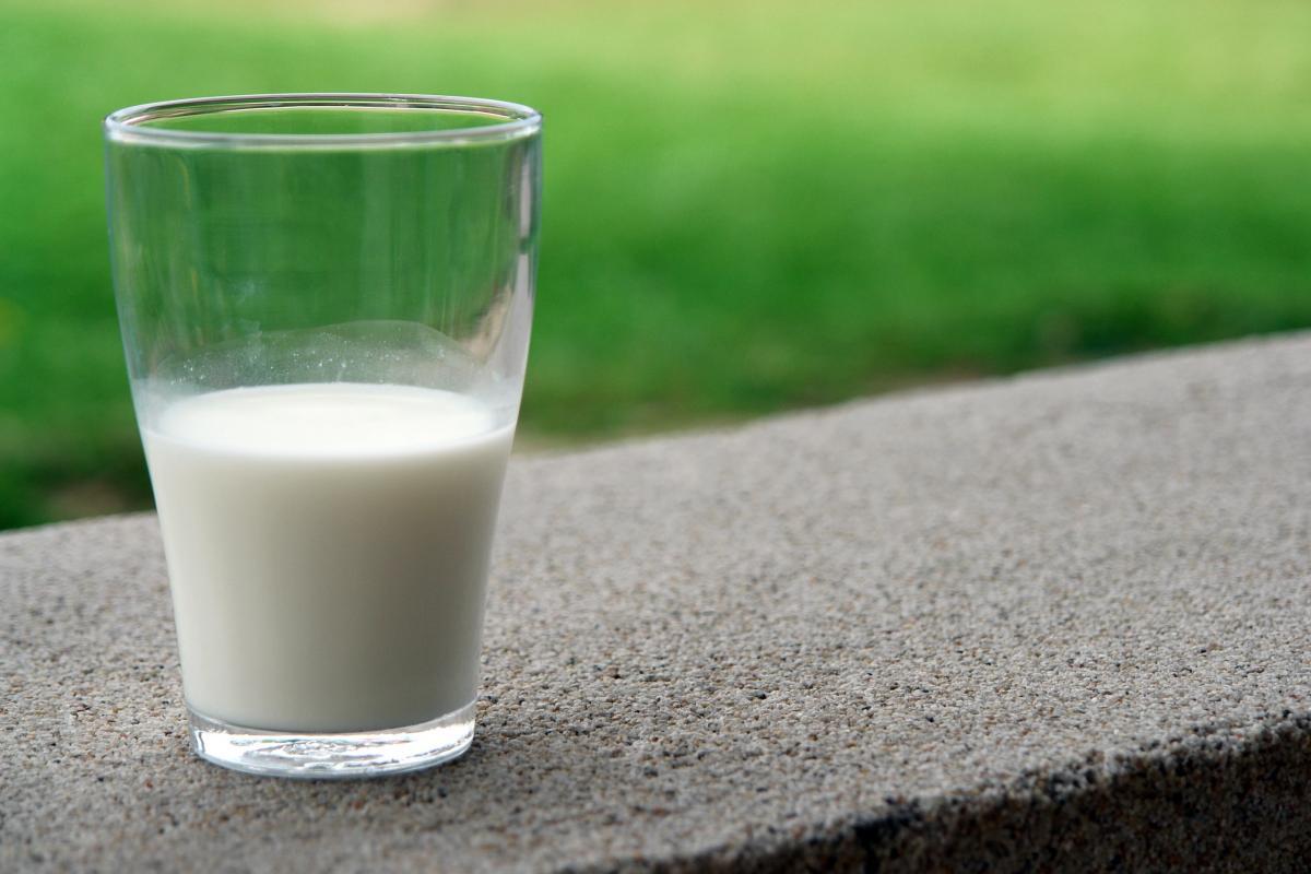 Blur calcium close up dairy #53338