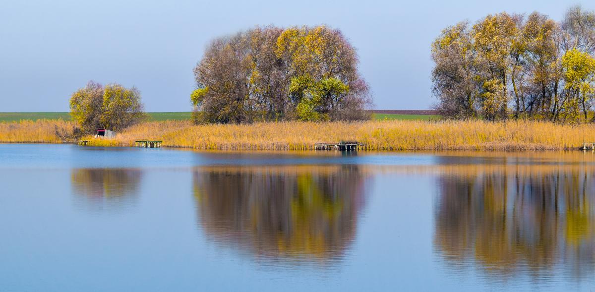 Autumn calm lake mirror #56276