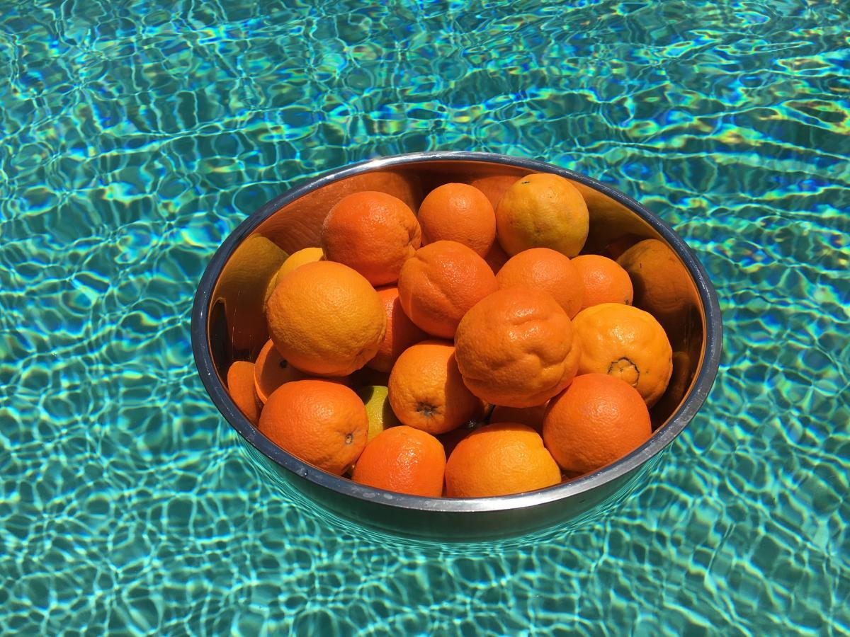 Metal bowl orange swimming pool