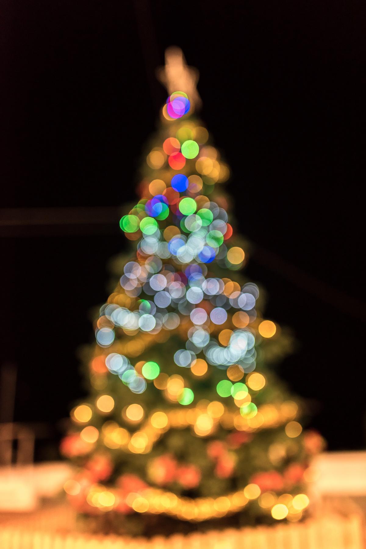 bokeh christmas christmas lights christmas tree 75377 - Blurred Christmas Lights