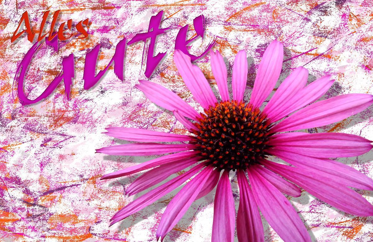 Art background birthday bloom #77592