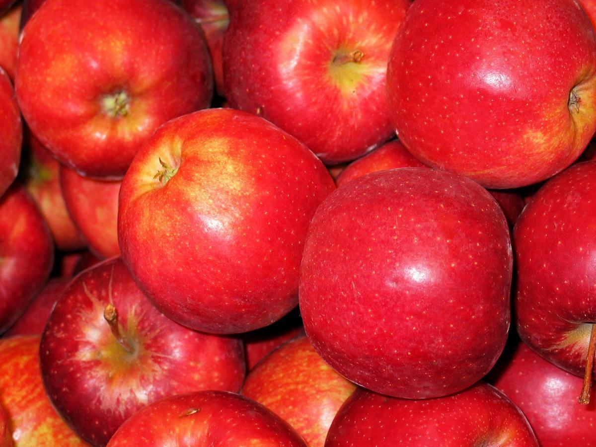 Apple apple tree baked apple bearing apple