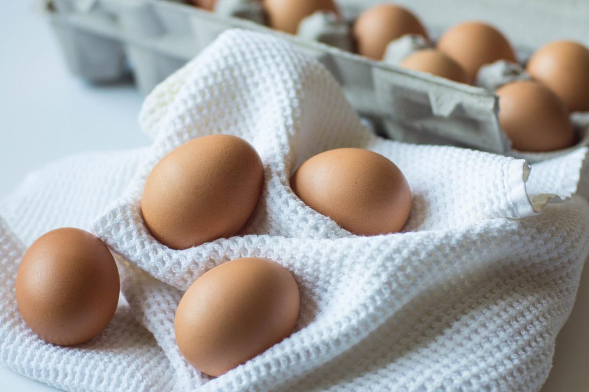Brown cook egg eggs