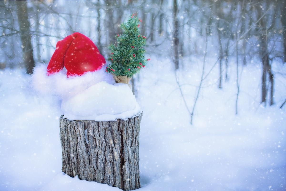 Christmas claus december decoration