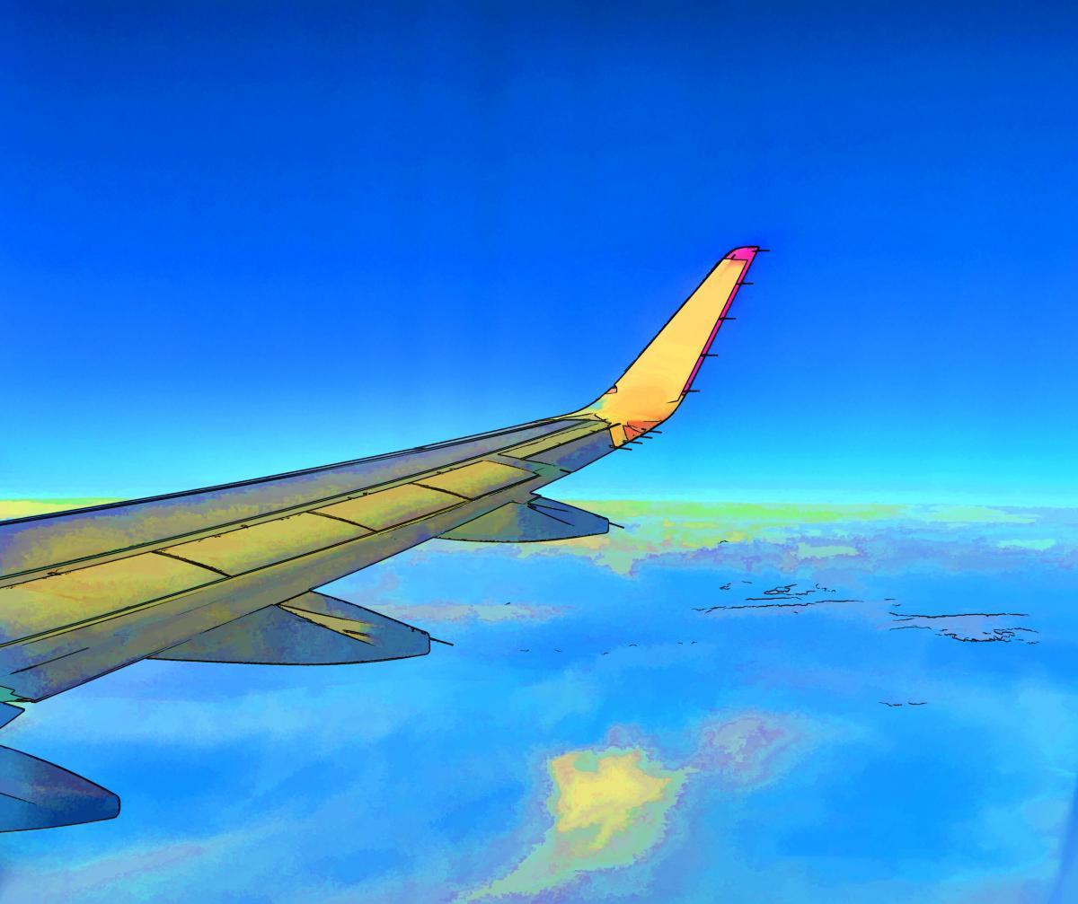 Sky Jet Wing #94210