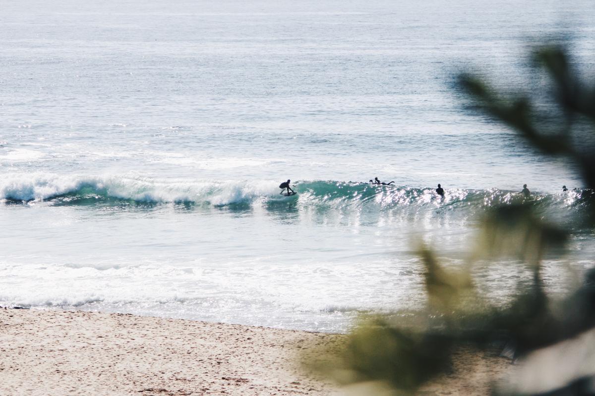 Ocean Sea Beach #97224