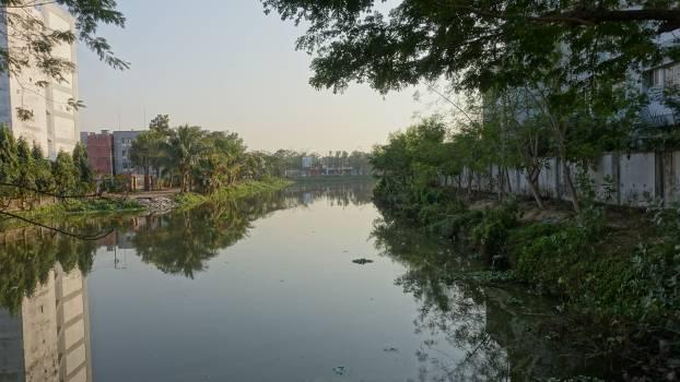 River #100032