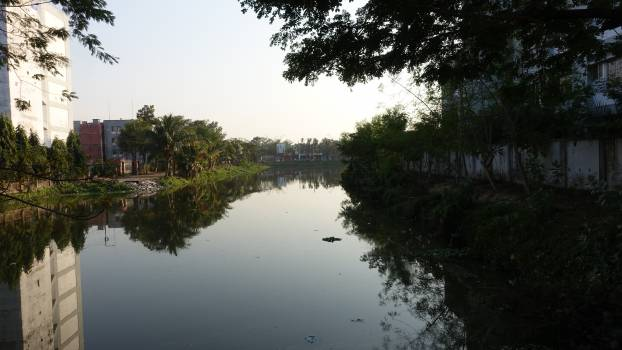 River #100033