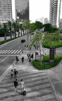 Build city city life metropolis #100174
