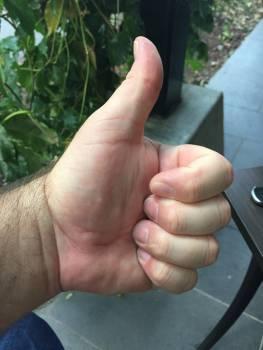 Hand okay thumbs up yes #100201