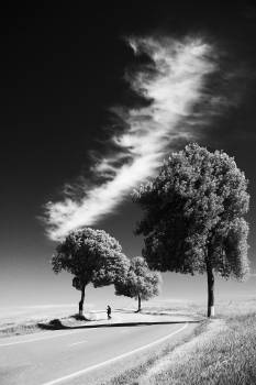 Sky Clouds Landscape #10206