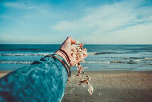 Beach Sea Ocean #10247