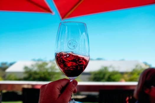 Wine Alcohol Glass #102554