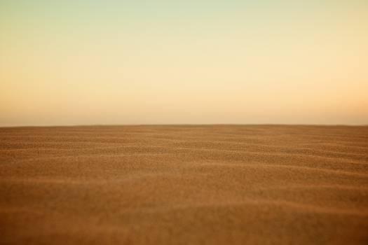 Dune Sand Desert #10261