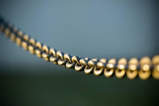 Bone Chain Jewelry Free Photo