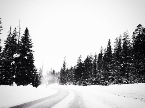 Snow Ice Winter #103160