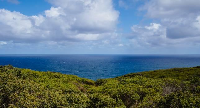 Water Sea Sky #10348