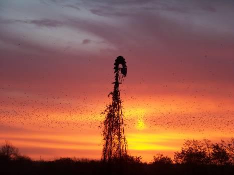 Sun Sunset Sky #104159