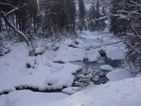 Crystal Snow Ice #104368