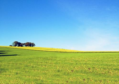 Farming Grassland Field Free Photo