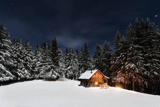 Snow Hovel House #10548