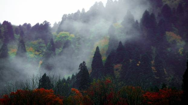 Mountain Sky Landscape #10549
