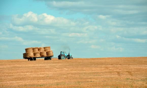 Hay Field Landscape #10561