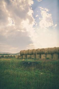 Landscape Grass Sky #105799