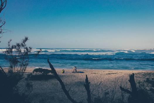 Beach Ocean Sea #10582