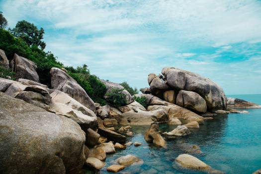 Rock Landscape Stone #10586