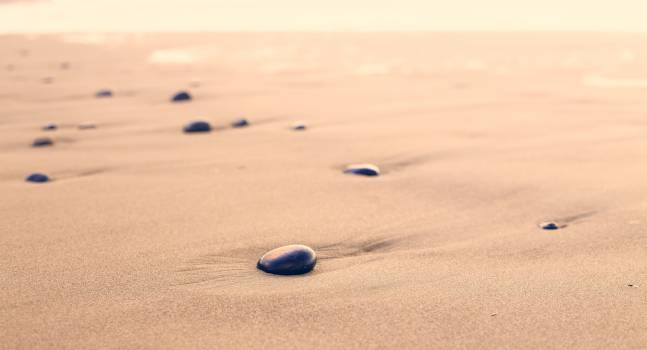 Sand Beach Ocean #10607