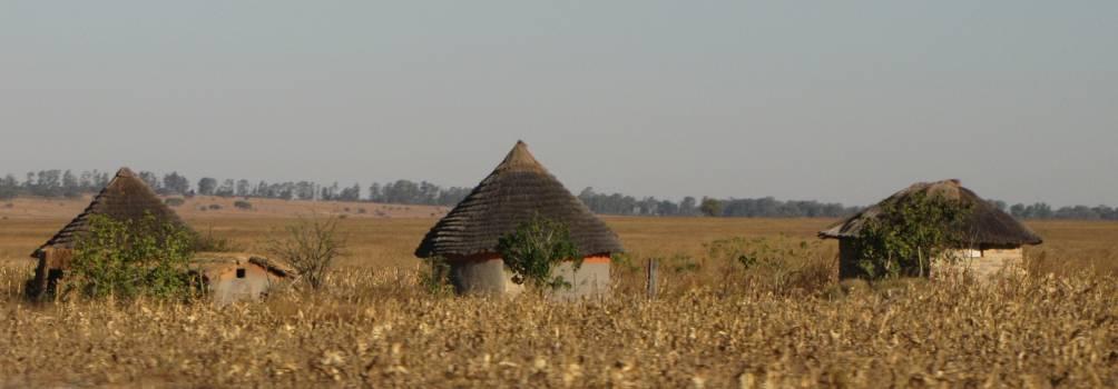 Thatch Roof Barn #106084