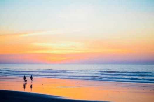 Beach Sea Ocean #10615