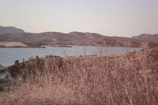 Land Field Landscape #10674