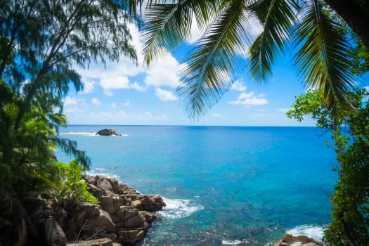 Turquoise Beach Sea #10687