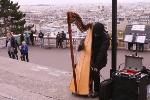 Chordophone Harp Stringed instrument #107659