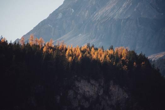 Mountain Range Landscape #10766