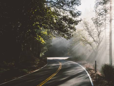 Way Road Landscape #10806