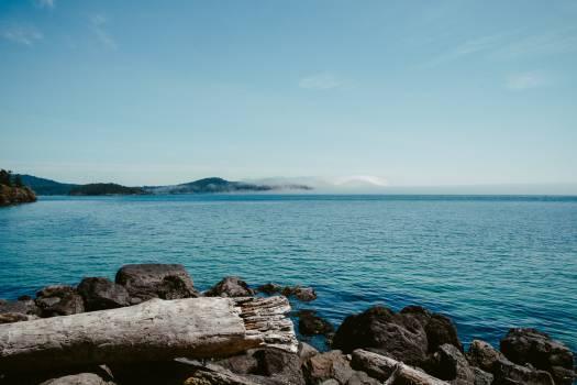 Ocean Sea Beach #10824