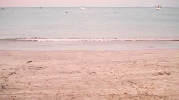 Sandbar Bar Beach Free Photo