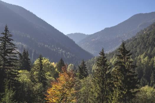 Mountain Valley Range #10890